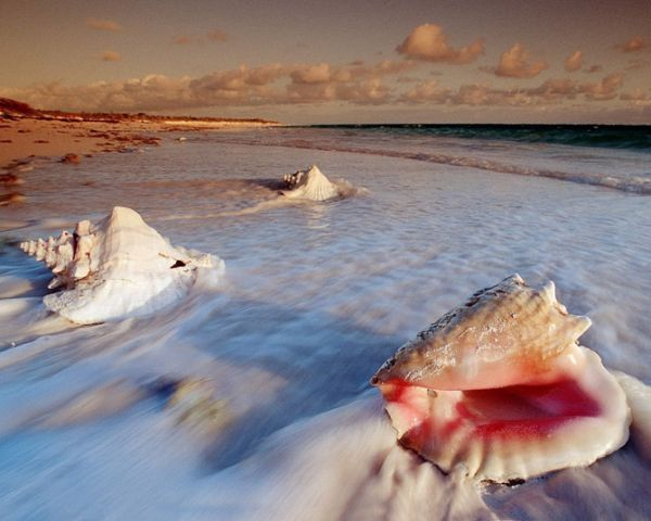 siempre el mar images on pinterest landscapes places and beach