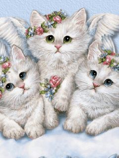 The Three Angel Kittens.