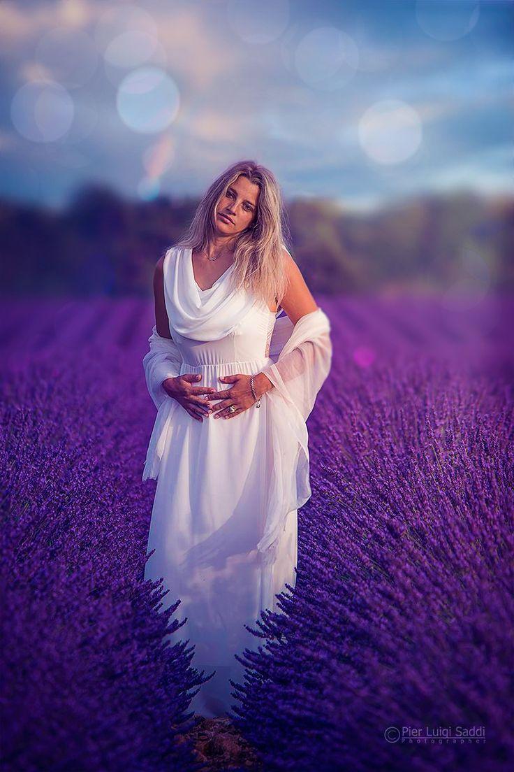 427 best Lavender images on Pinterest   Lavender, Lavender fields ...