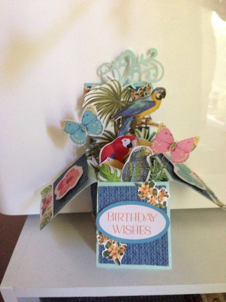 Bird Box Card Andrea Bruce
