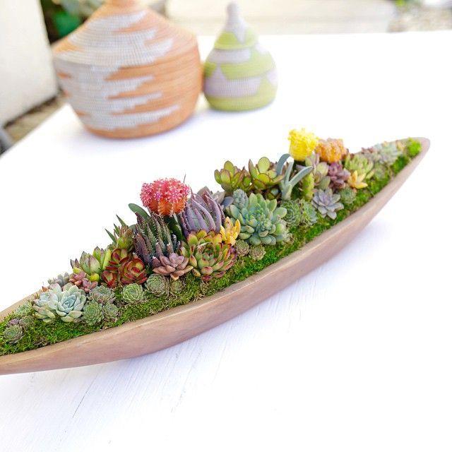 """""""Succulents in a teak boat! Love these for centerpieces!!// arrangement by Dalla Vita dallavita.com"""