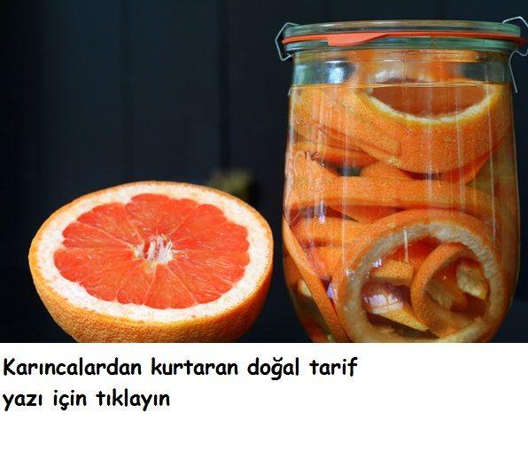 malzemeler:  1/4 elma sirkesi  1/4 su bardağı su  karanfil yağı ve portakal    elma sirkesini ve suyu püskürtmeli bir şişeye koyun içerisine birkaç damla karanfil yağı ekleyin  portakalın kabuklarını soyup bu kabuklarıda karşıma ekleyin ve spreyi çalkalayın karınca gördüğünüz yerlere sıkın bir süre sonra karıncalar artık gelmeyecektir