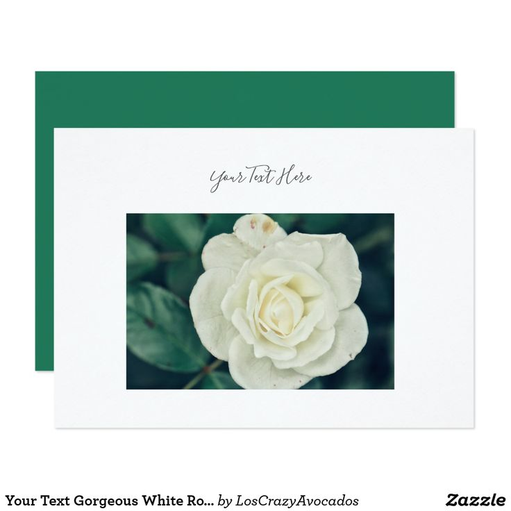 Your Text Gorgeous White Rose Flower Invitation
