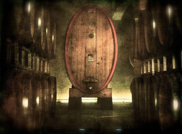 100 HL - Italian Red Wine - OLYMPUS DIGITAL CAMERA