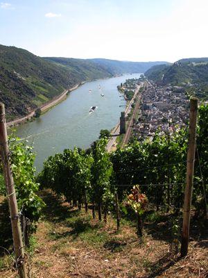 Rhin romantique. Vue sur Oberwesel Photo © Eike Kunz Rheinland-Pfalz Tourismus GmbH