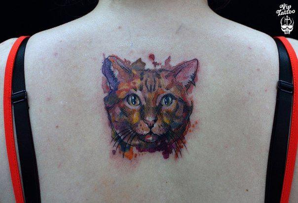 #tattoo #tattoos #tattooed #tattooartist #tattooart #тату #татуировка #татуировки #бодиарт #татудня #татухной #татусалон #vip #tattoo_omsk #vip_tattoo_omsk #like #blacktattoo #омск #омсктату #omsk #ink #viptattoo #vip_tattoo #viptattoostudio #кот #кошка #киса