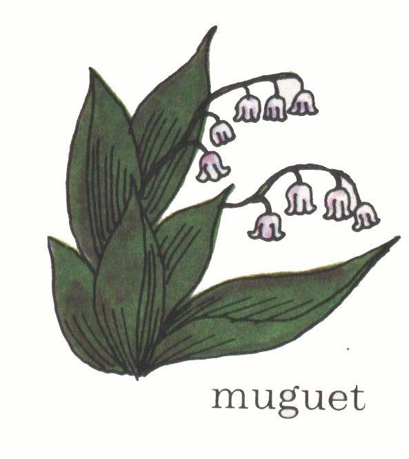 img/dessins de mots/muguet.jpg
