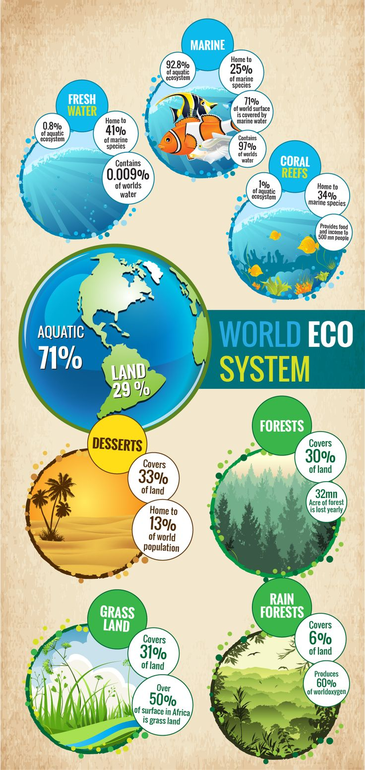 Ecosystem is defined as a biological community of interacting organisms and their physical environment. In other words, it is simply the system or way, in which the components of nature interact with each other. This system has different functionalities according to its nature that is, either landform or aquatic.