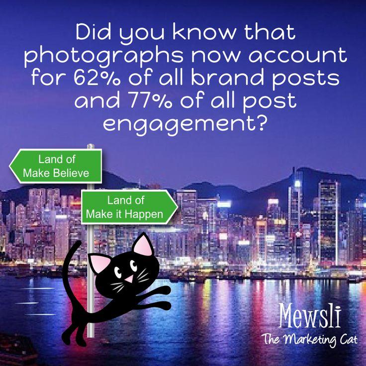#Mewsli at Hong Kong Harbour!