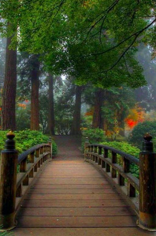 Portland Japanese Garden at Washington Park in Portland, Oregon • photo: David Gn on Flickr