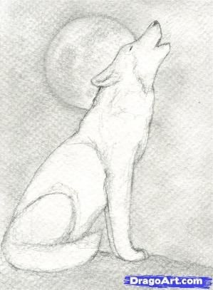 wolves to draw | Step 9. How to Draw a Howling Wolf by bessie
