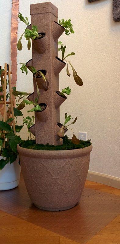 Indoor Tower | Hydroponic farming, Hydroponics diy, Indoor ...