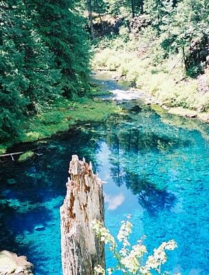 Tamolitch Pool trailhead is a two-mile hike up the trail from the Trailbridge Reservoir. It is on the top half of the McKenzie River trail about 2 miles from the halfway point on the trail. & six miles from the Sahalie Falls and Koosah Falls May through August