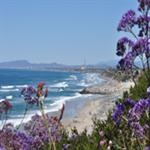 Guide to Cardiff-by-the-Sea Beaches | Official San Diego, Ca. Travel Resource