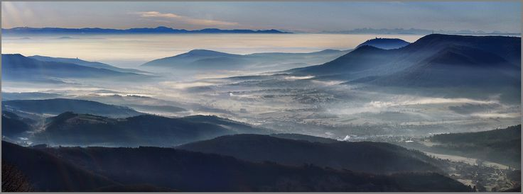 Panorama d'Alsace Wolfberger 2008