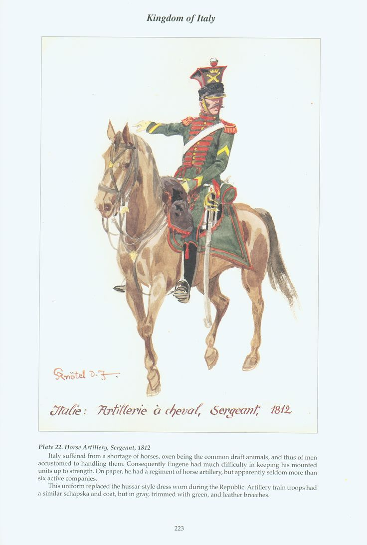Kingdom of Italy: Plate 22: Horse Artillery, Sergeant, 1812