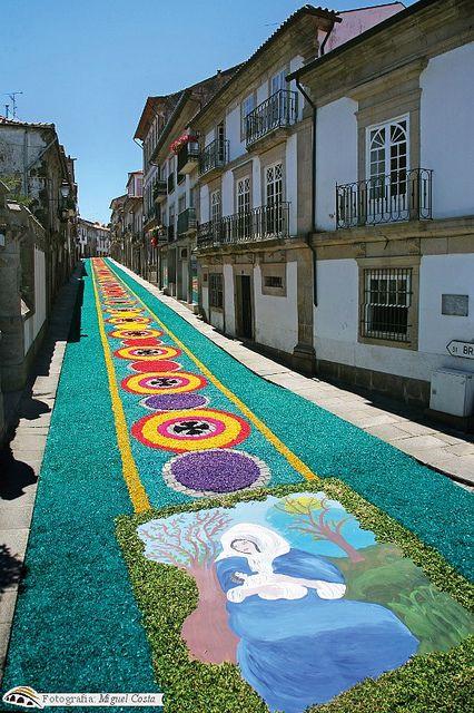 flower carpet in Lima,Portugal