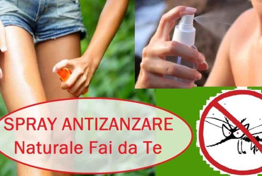 Spray e lozioni fai da te per tenere lontani insetti e zanzare