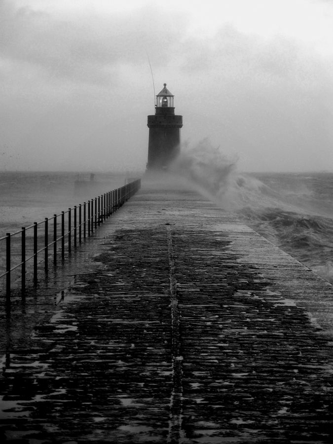 Freddie Reed I love lighthouse art