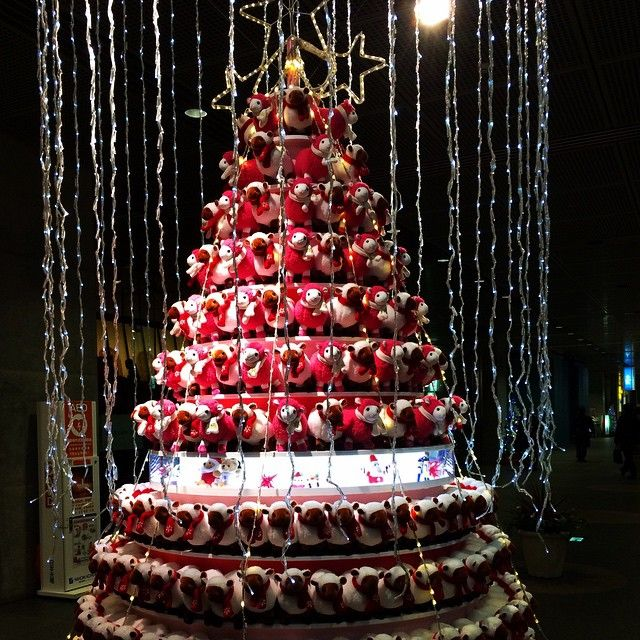 20 Best Christmas Trees Around The World Images On Pinterest  - Visiting The National Christmas Tree