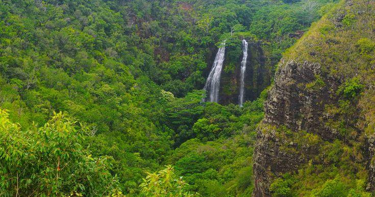 Details for Discover Kauai & Luau