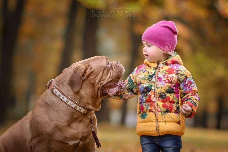 Маленькие дети и их огромные собаки: 10 фото | Женское здоровье