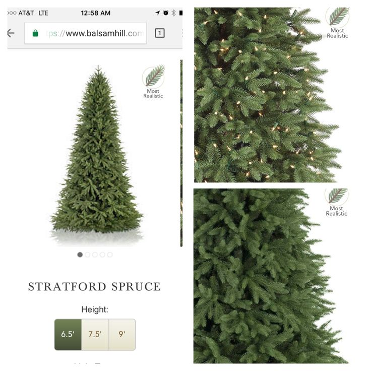 https://www.balsamhill.com/p/stratford-spruce-artificial-christmas-tree?sku=5066885  Bring the outdoors inside. Tress for pool area. On sale now !! Buy two or three