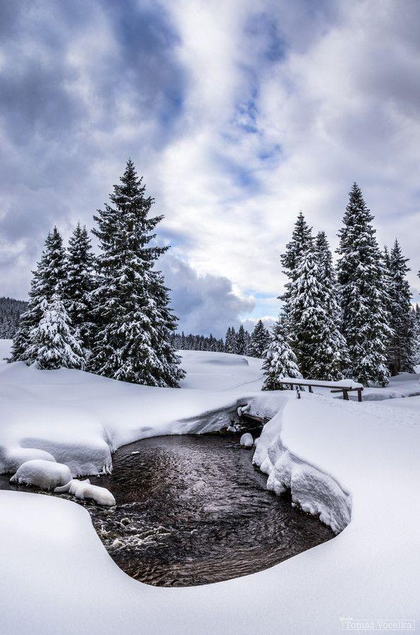 Winter in the Czech Republic, Bohemian Forest by Tomáš Vocelka on 500px