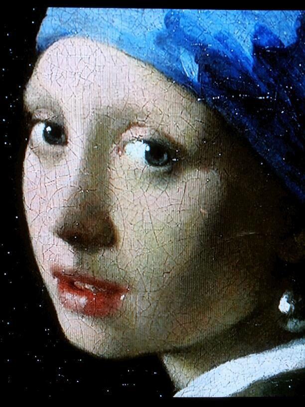 """Vermeer """"avere gli occhi molto grandi, il naso molto piccolo, e la bocca molto carnosa"""""""