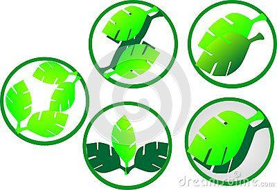 Vector logo elements green gradients.
