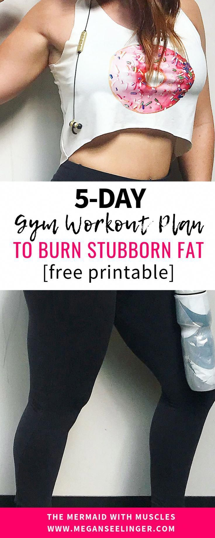 The Easiest Way to Burn Belly Fat + A 5 Day Workout Plan [printable] – Workout Plan
