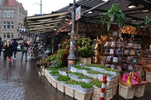 Mercado tulipanes