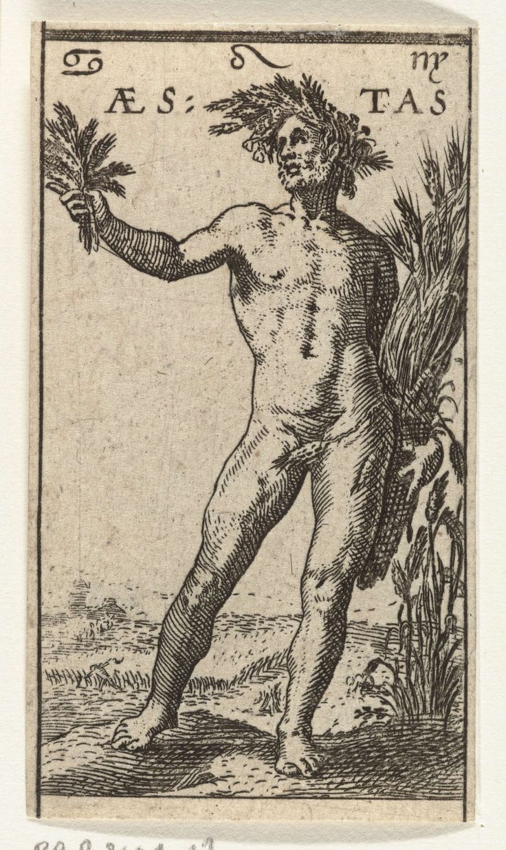 Anonymous   Zomer, Anonymous, Jacob Matham, Hendrick Goltzius, 1606   De personificatie van de zomer, een staande naakte man met krans van korenaren op zijn hoofd. Hij houdt een korenschoof in zijn linkerhand en een paar korenaren in zijn opgeheven rechterhand. Bovenaan de drie sterrenbeelden Kreeft, Leeuw en Maagd.