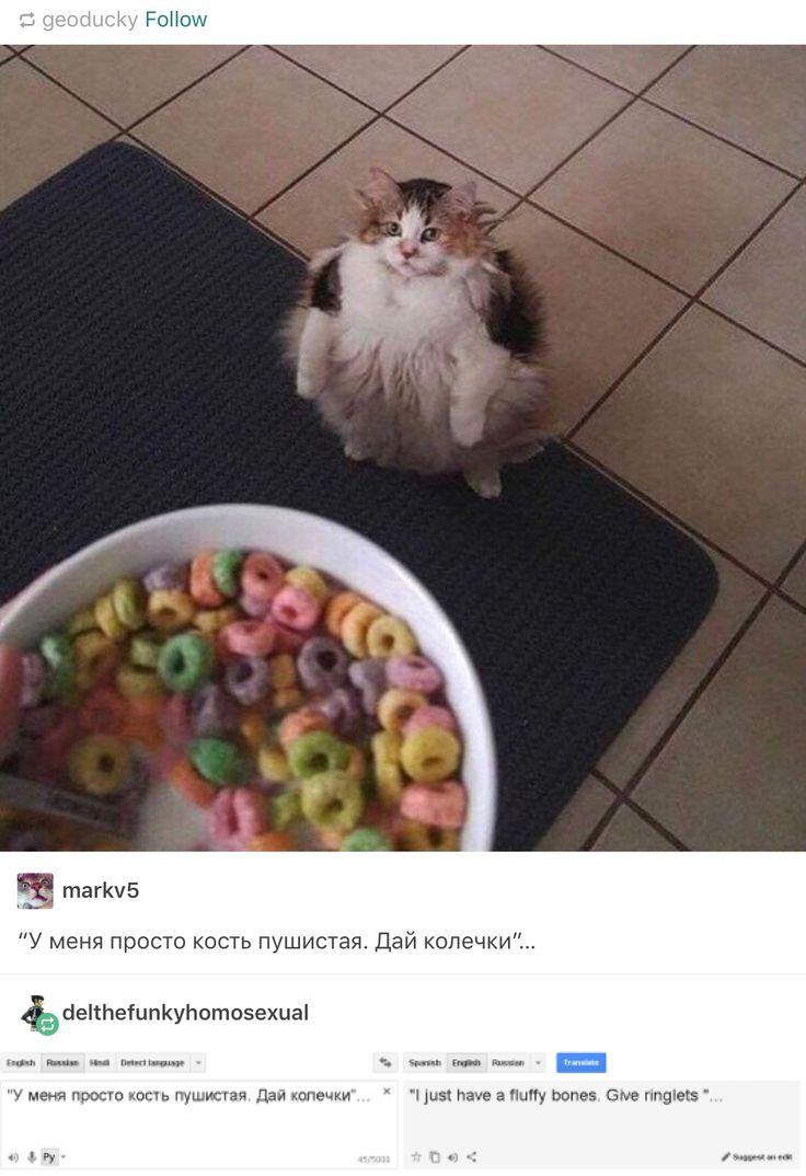 Tumblr tumbles into Russian fat cats