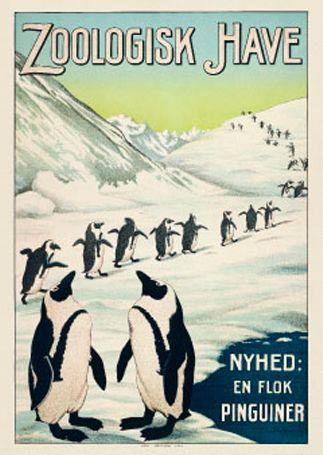Pingvin plakat - Køb online hos Permild & Rosengreen