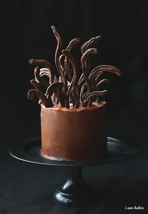 Cool Medusa Cake from Amanda at I am Baker: Cakes Chocolates, Halloween Parties, Cakes Ideas, Chocolates Cakes, Birthday Parties, Medusa Cakes, Halloween Food, Halloween Cakes, Art Projects