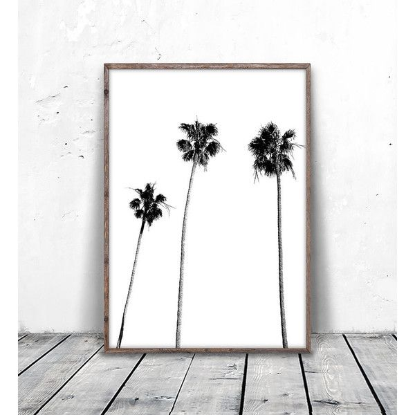 Palm Tree, Palm Tree Print, Palm Print, Palm Tree Photo, Black and... (€5,91) ❤ liked on Polyvore featuring home, home decor, wall art, tropical palms, black and white palm trees, black white home decor, tropical palm plants and printable wall art