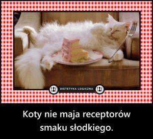 Koty nie maja receptorów  smaku słodkiego.