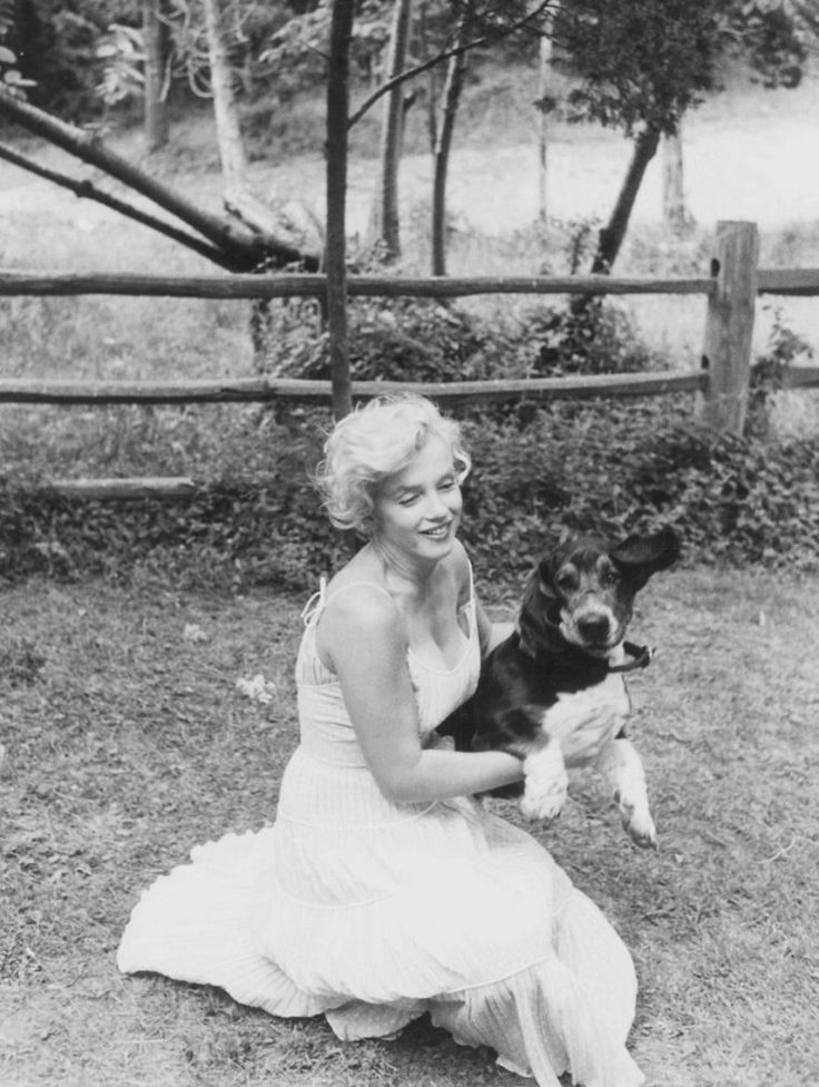 Marilyn Monroe and hugo bloodhound