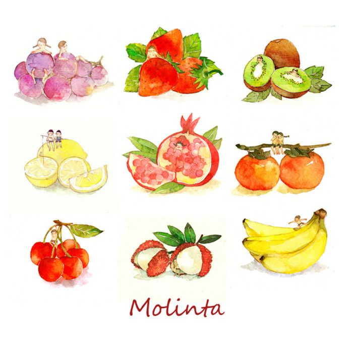 molinta 的插画 水果9连发..