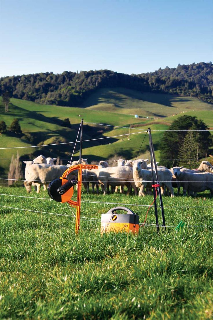 Temporary electric fences are easy on the animals, easy on the land and easy on you.