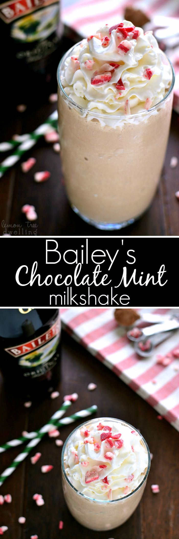 This Bailey's Chocolate Mint Milkshake is everything you could want in a milkshake...and perfect for the holidays!