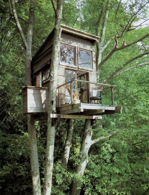 tree houseCabin, Tiny House, Favorite Places, Dreams, Tree Houses, Treehouse, Trees House, Architecture, Deer Stands