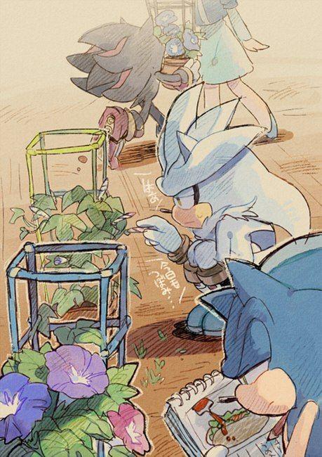 StH fun,Sonic,соник, Sonic the hedgehog, ,фэндомы,Sonic the hedgehog,StH Персонажи,Shadow the hedgehog,Silver the hedgehog,Maria Robotnik,Tikal the echidna,chaos (sonic)
