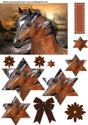 BEAUTIFUL BROWN HORSE Star Pyramids on Craftsuprint - Add To Basket!