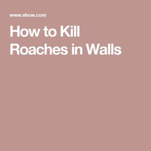 How to Kill Roaches in Walls