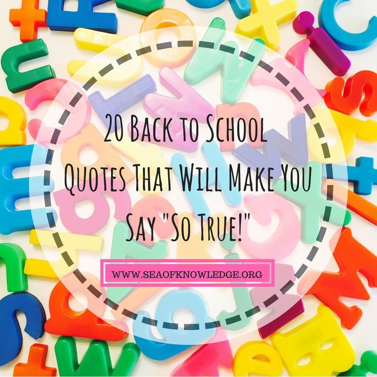 """Again to College Humorous Quotes That Make Will Make You Say """"So True!"""""""