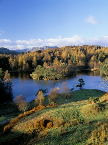 Tarn Hows, Lake District National Park, Cumbria, England, United Kingdom