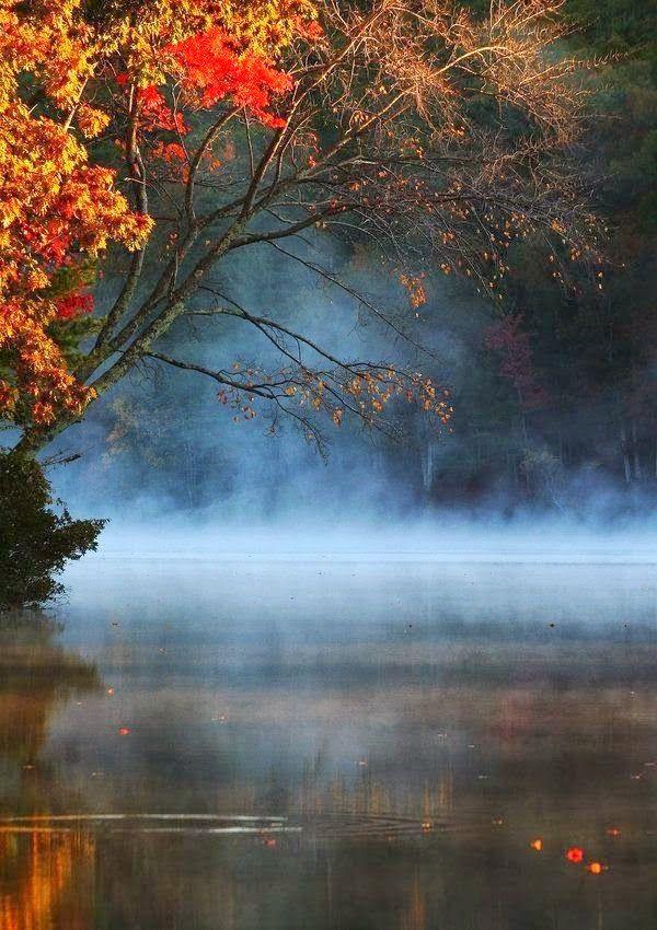 Autumn Evening Pond www.facebook.com/loveswish