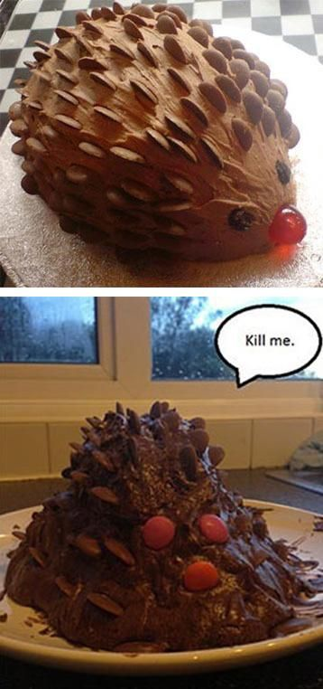This cake didn't go quite as planned